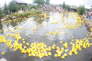 Rubber Duck Race In Breckenridge, CO.